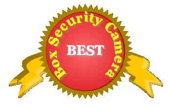 Box security camera badge